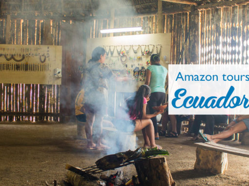 Amazon tours (Ecuador)